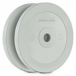 Capital Sports Methoder, šedé, technický kotouč, kotoučové závaží, guma, pár, 2,5 kg
